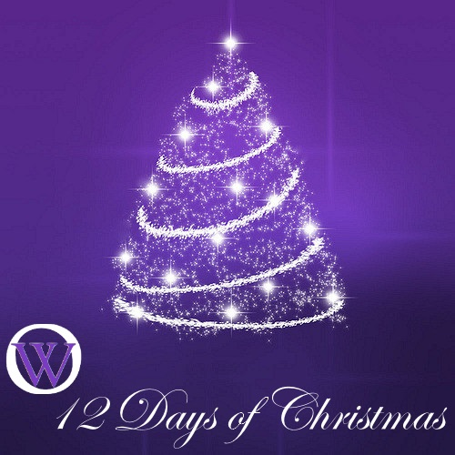 """White outline of a Christmas, with white lights and garland, The text reads OW 12 Days of Christmas. The """"OW"""" in the text is the Ordain Women logo."""